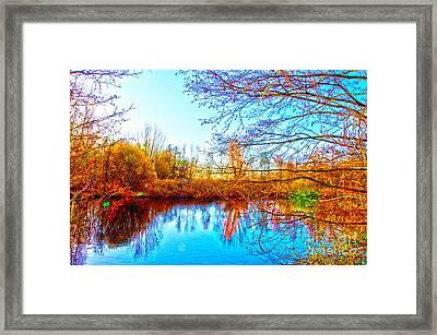 Countryside Framed Print by Pravine Chester