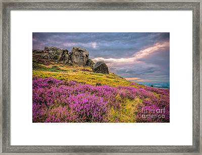 Cow And Calf Rocks Framed Print by Mariusz Talarek