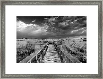Daimiel Framed Print by Guido Montanes Castillo