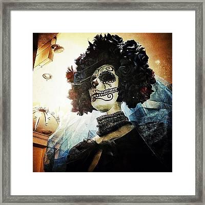 Dia De Los Muertos Framed Print by Natasha Marco