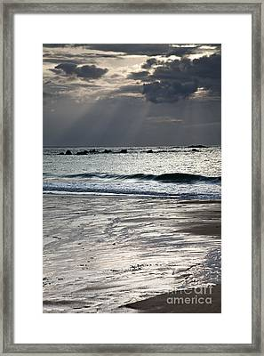 Evening At The Sea Framed Print by Nailia Schwarz