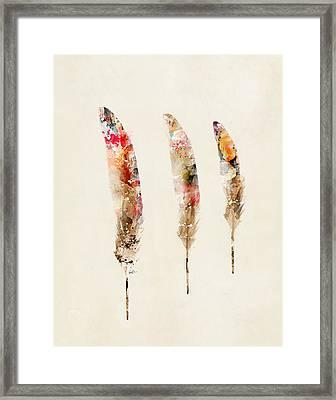 3 Feathers Framed Print by Bri B