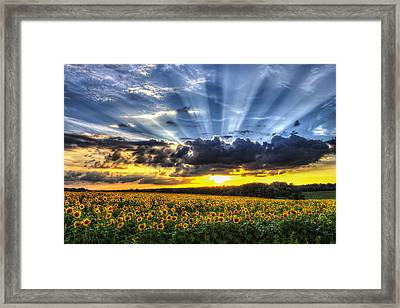 Field Of View Framed Print by Chris Austin