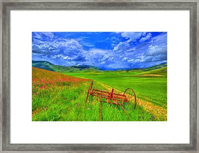 Fields Of Dreams Framed Print by Midori Chan