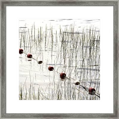 Floats Framed Print by Bernard Jaubert