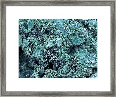 Gypsum Crystals, Sem Framed Print by Steve Gschmeissner