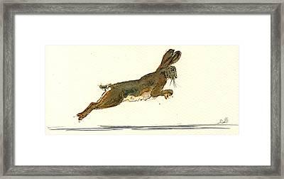 Hare Framed Print by Juan  Bosco