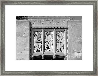 Indiana University Myers Hall Anatomy Framed Print by University Icons