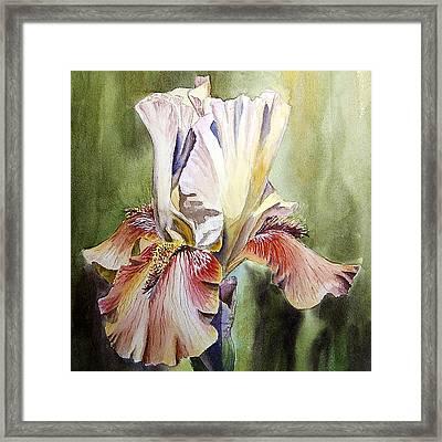 Iris Painting Framed Print by Irina Sztukowski
