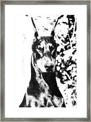 Knock Out Framed Print by Rita Kay Adams