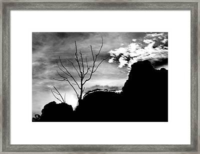 La Creation Framed Print by Vinci Photo