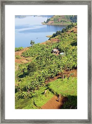 Lake Mutanda Near Kisoro In Uganda Framed Print by Martin Zwick