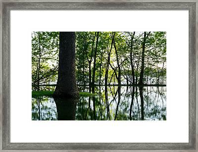 Lake Nokomis In A Wet Spring Framed Print by Jim Hughes