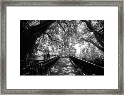 New Orleans  Framed Print by Alicia Morales