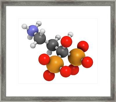 Pamidronic Acid Osteoporosis Drug Framed Print by Molekuul