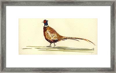 Pheasant Framed Print by Juan  Bosco