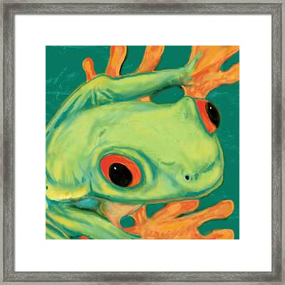Rainforest Frog Stylised Pop Art Drawing Portrait Poster Framed Print by Kim Wang