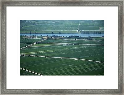 Rice Fields, Ebro Delta Framed Print by Jordi Todó Vila