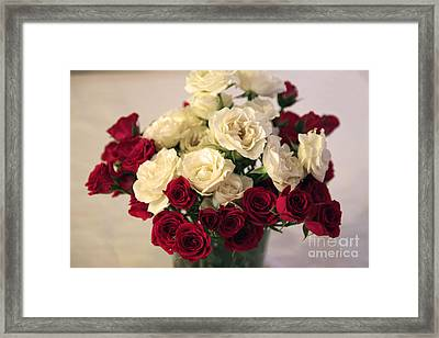 Roses Framed Print by Amanda Barcon