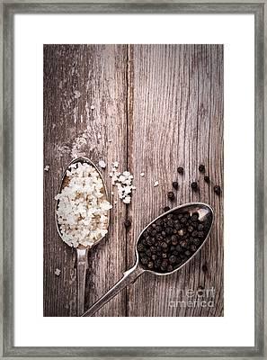Salt And Pepper Vintage Framed Print by Jane Rix
