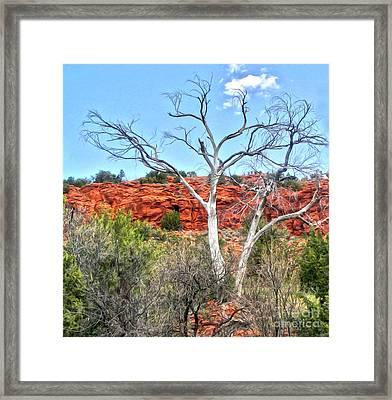 Sedona Arizona Dead Tree Framed Print by Gregory Dyer