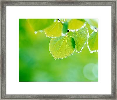Selective Focus Close Up Of Green Framed Print by Panoramic Images