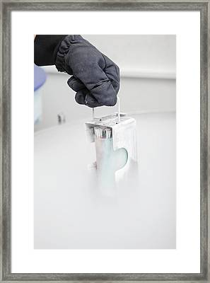 Sperm Bank Framed Print by Science Photo Library