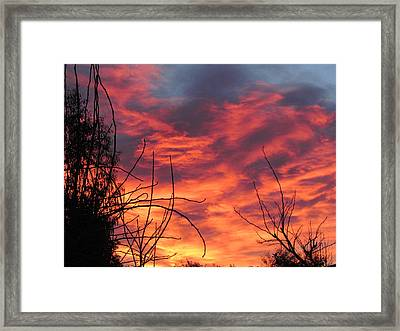 Sunset Skys Framed Print by Joyce Woodhouse