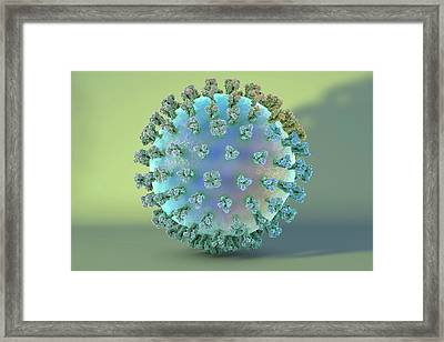 Swine Flu Virus H1n1 Framed Print by Kateryna Kon