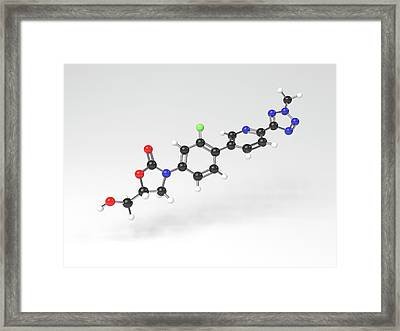Tedizolid Antibiotic Molecule Framed Print by Indigo Molecular Images