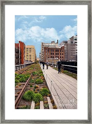 The High Line Urban Park New York Citiy Framed Print by Amy Cicconi