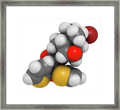 Tiotropium Bromide Copd Drug Molecule Framed Print by Molekuul