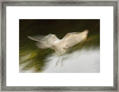 Usa, Florida, St Framed Print by Jaynes Gallery