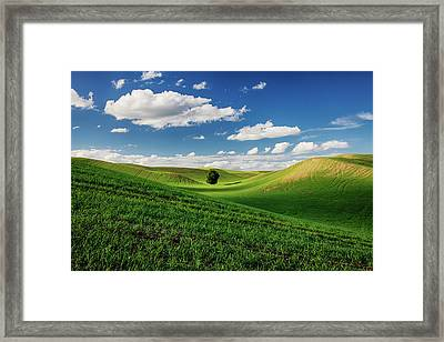 Usa, Washington State, Colfax, Rolling Framed Print by Terry Eggers