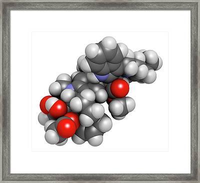 Vinorelbine Cancer Chemotherapy Drug Framed Print by Molekuul
