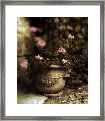 Vintage Planter Framed Print by Jessica Jenney