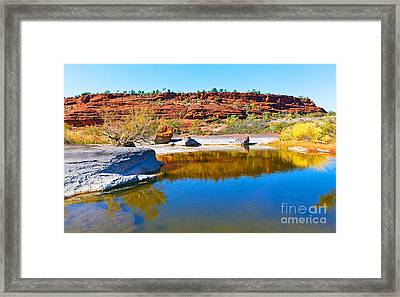 Palm Valley Central Australia  Framed Print by Bill  Robinson