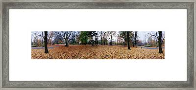 360 Degree View Of An Urban Park Framed Print by Panoramic Images