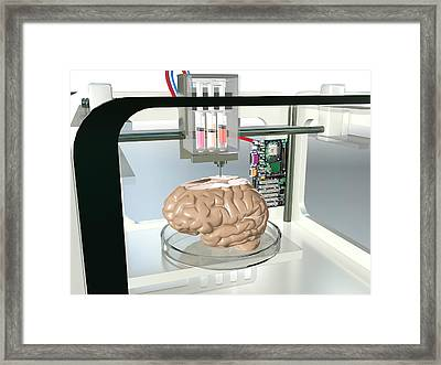 3d Printed Brain Framed Print by Christian Darkin