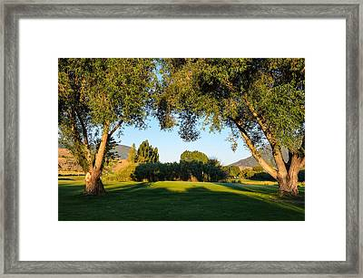 3rd Green At Quilchena  Framed Print by Randy Giesbrecht