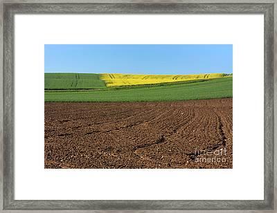 Agricultural Landscape. Auvergne. France. Framed Print by Bernard Jaubert