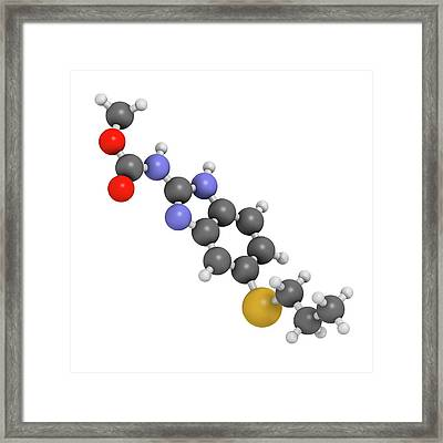 Albendazole Anthelmintic Drug Molecule Framed Print by Molekuul