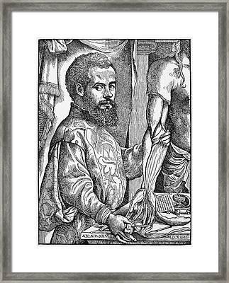 Andreas Vesalius (1514-1564) Framed Print by Granger