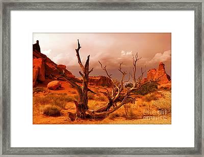 Arches National Park Framed Print by Sophie Vigneault