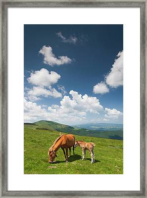 Bulgaria, Central Mountains, Troyan Framed Print by Walter Bibikow