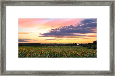 Buttonwood Farm Framed Print by Andrea Galiffi