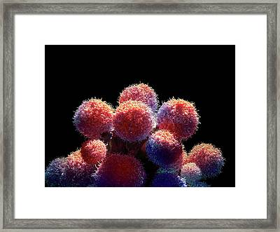 Cancer Cells Framed Print by Maurizio De Angelis