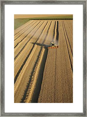 Combine Harvesters At Work Framed Print by Laurent Salomon