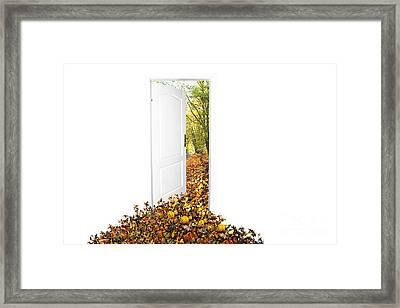 Door To New World Framed Print by Michal Bednarek
