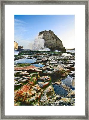 Dramatic View Of Shark Fin Cove In Santa Cruz California. Framed Print by Jamie Pham